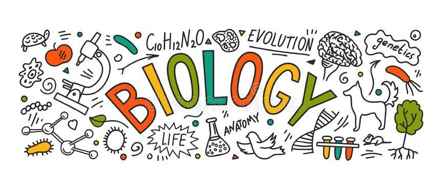 Biologia 2BTX (Elisabet Pous)